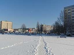 Photo 282
